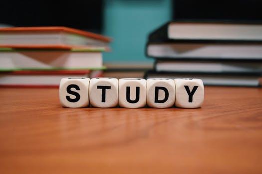 スタディサプリEnglishで日常英会話の勉強、はじめました!